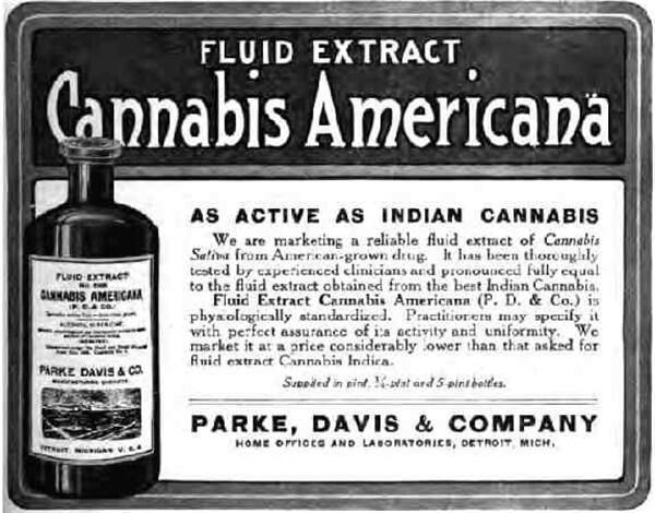 Экстракт медицинского каннабиса