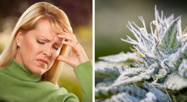 Мигрень и марихуана