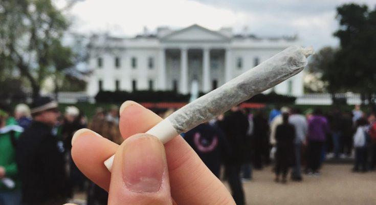 Белый Дом не терпит марихуаны