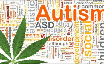 Каннабис и аутизм