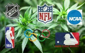Каннабис и спорт
