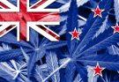 Новозеландская легализация