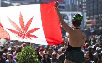 Легализация каннабиса в Канаде