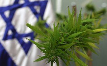 Медицинская марихуана в Израиле